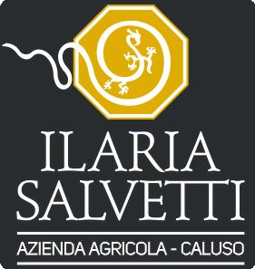 Ilaria Salvetti Logo